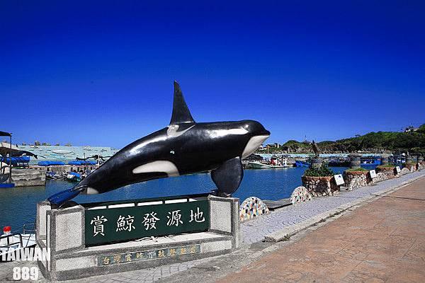東部賞鯨1(1)