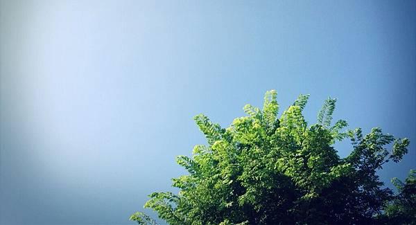 iPhone5照片 562.jpg