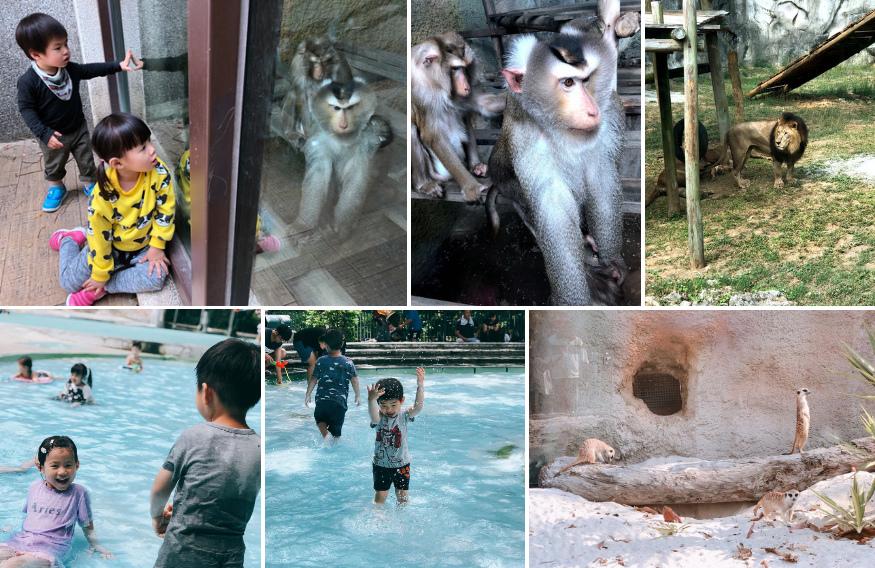 動物園.bmp