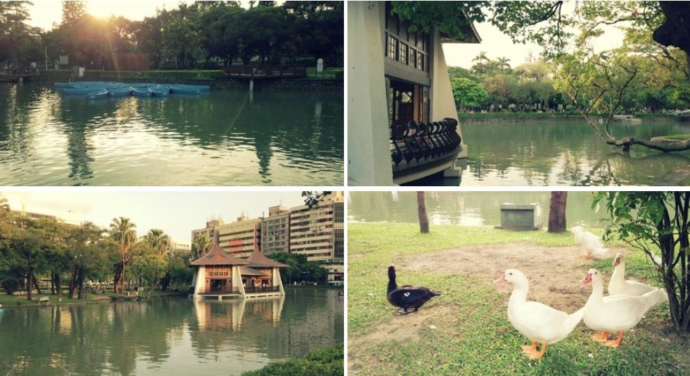 台中公園.jpg