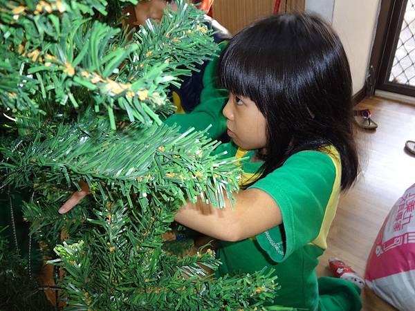104.12.11聖誕樹布置 (3)