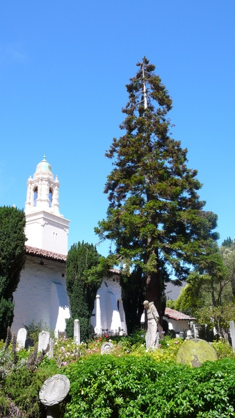 Mission Dolores9