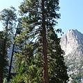 Yosemite4