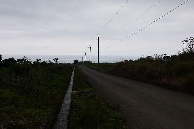 P1100680.jpg