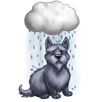 濕淋淋的雨狗