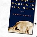 Garth Stein 的雨狗 (原文版)