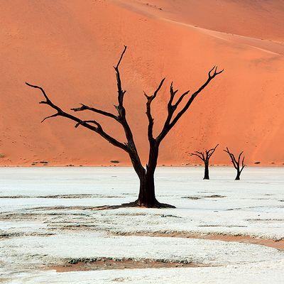 Namibia_photo_02