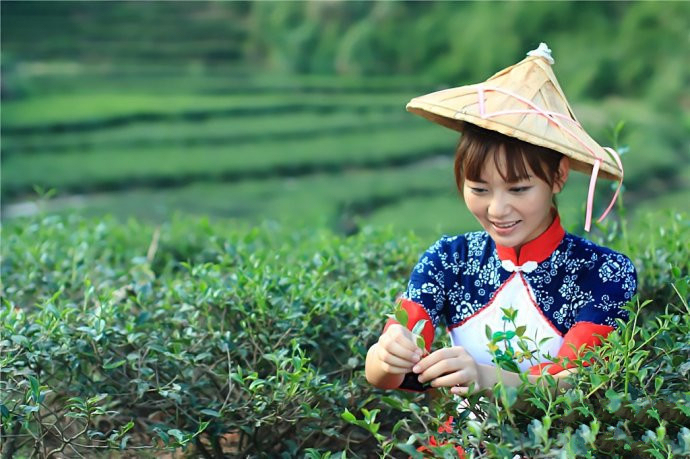 中國茶姐08