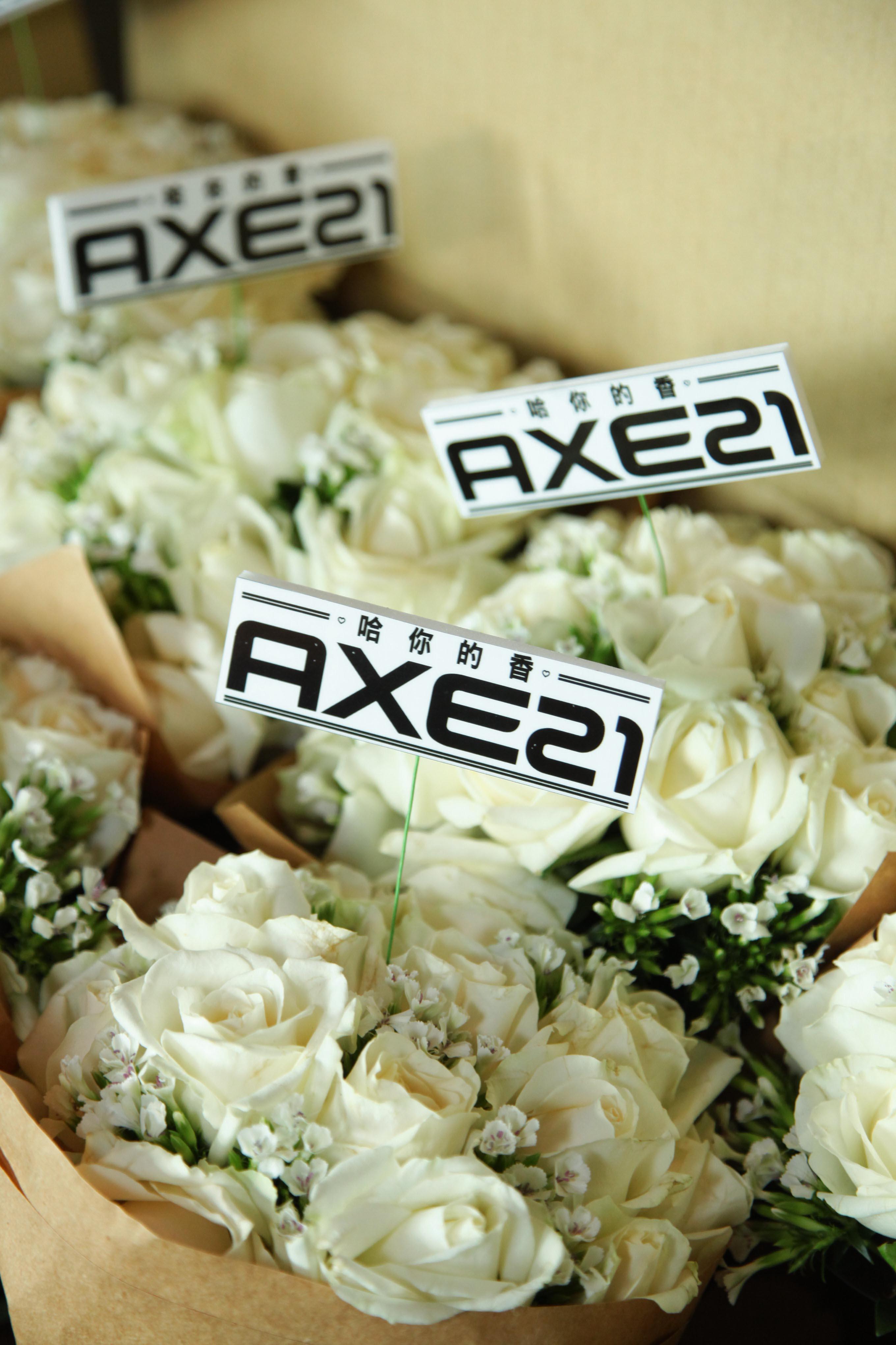 AXE21 11