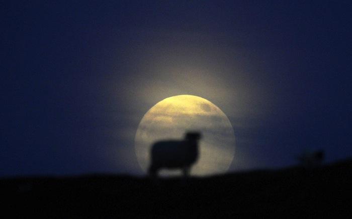 超級月亮 06