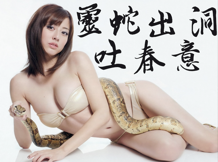 靈蛇出洞吐春意