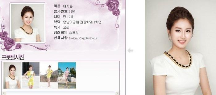 韓國小姐 2013 11