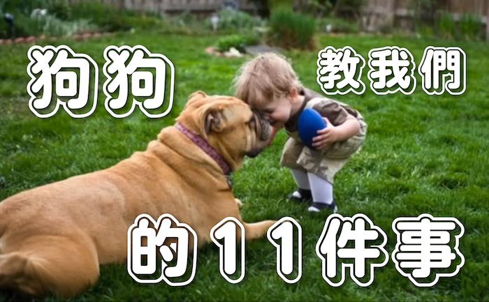 狗狗教我們的11件事