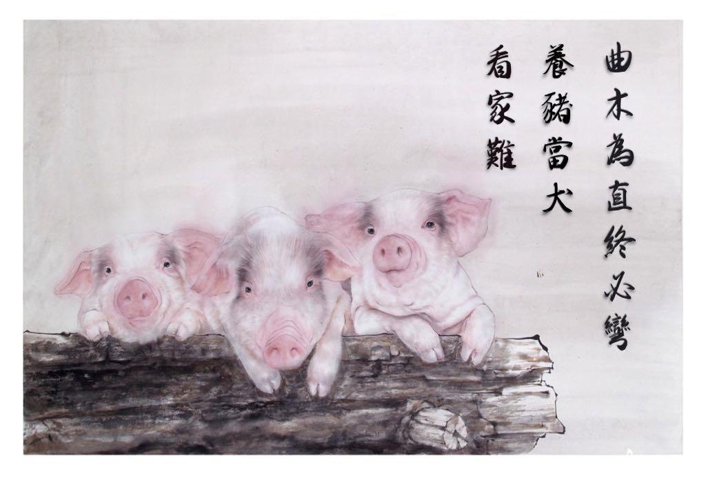 養豬當犬看家難