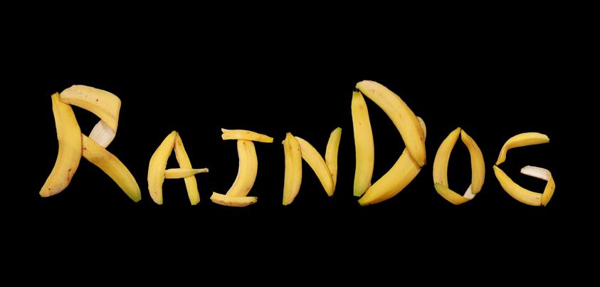 RainDog 雨狗
