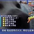 日本震災餘生的狗狗28.jpg