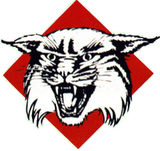 DavidsonWildcats.png