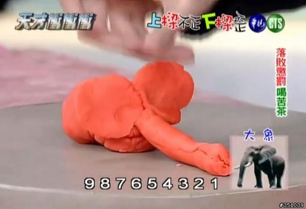 蝴蝶的大象.jpg