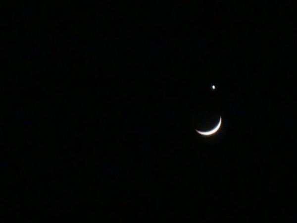 月掩金星02.jpg