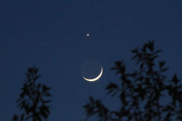 月掩金星03.jpg