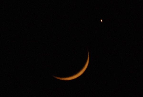 月掩金星12.jpg