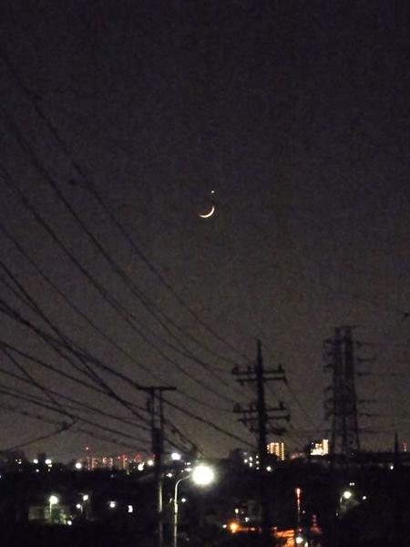月掩金星13.jpg