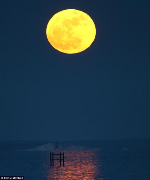 超級月亮03.jpg