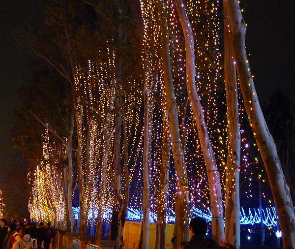 2011台灣燈會在苗栗062.jpg