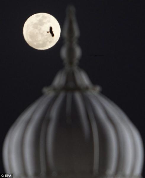 超級月亮02.jpg