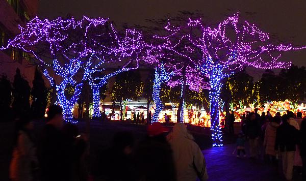 2011台灣燈會在苗栗018.jpg