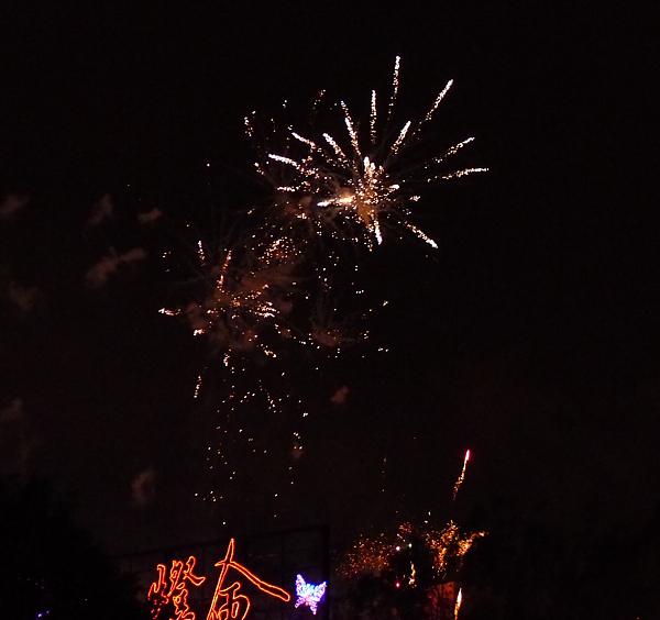 2011台灣燈會在苗栗071.jpg
