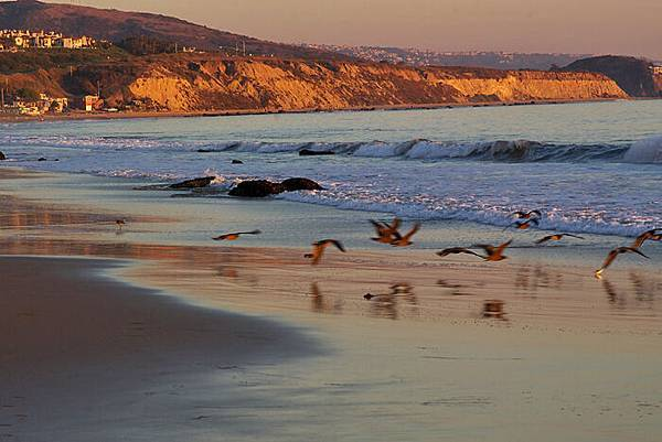 crystal cove state park-13