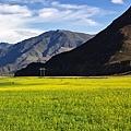 青藏公路-29.jpg