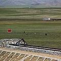 青藏鐵路-24.jpg