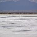 茶卡鹽湖-11.jpg