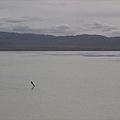 茶卡鹽湖-25.jpg