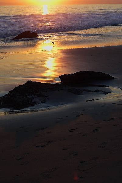 crystal cove state park sunset.jpg