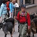 Zermatt-30.jpg