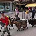 Zermatt-32.jpg