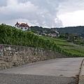 Lavaux-09.jpg