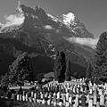 Grindelwald-01