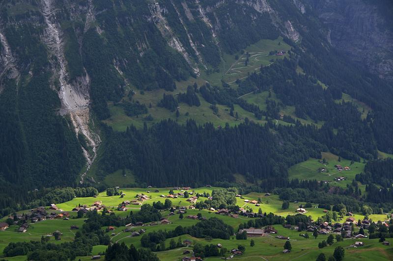 Grindelwald-05