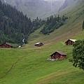 Grindelwald-19