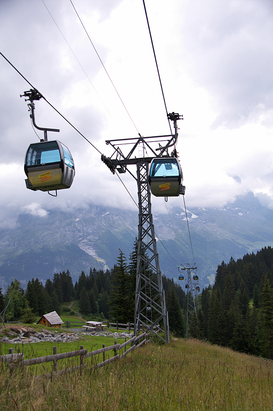 Grindelwald-21