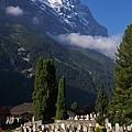 Grindelwald-66