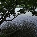 阿寒湖-47