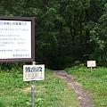 櫻瀑布-01