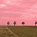 メルヘンの丘-06