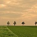 メルヘンの丘-07