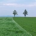 メルヘンの丘-09